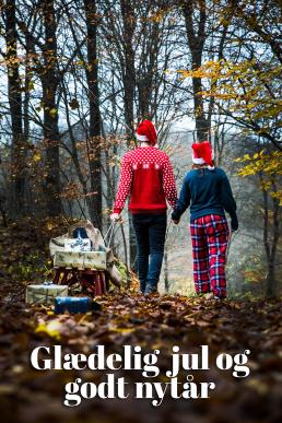 Julekort par går med kælk med pakker på i skoven